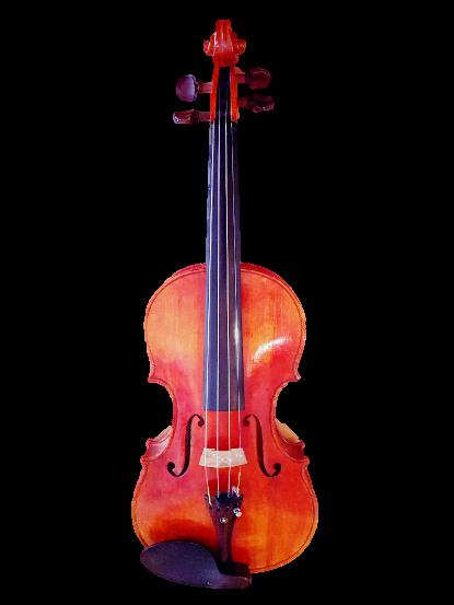 Salzburg Violine - Romana Rauscher